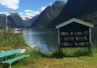 তাবৎ দুনিয়া থেকে কেন বই প্রেমীরা এই The Norwegian Book Town এসে হাজির হন ?