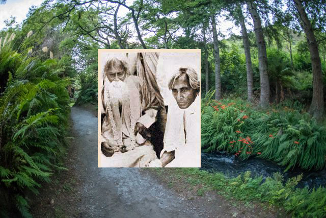 শরৎচন্দ্র চট্রোপাধ্যায় বনাম রবীন্দ্রনাথ ঠাকুর ও তাদের দার্শনিক ক্লাস রসবোধ